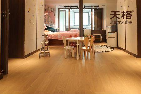 天格地暖实木地板:史南桥定制款创造梦想魔法家照相机电池